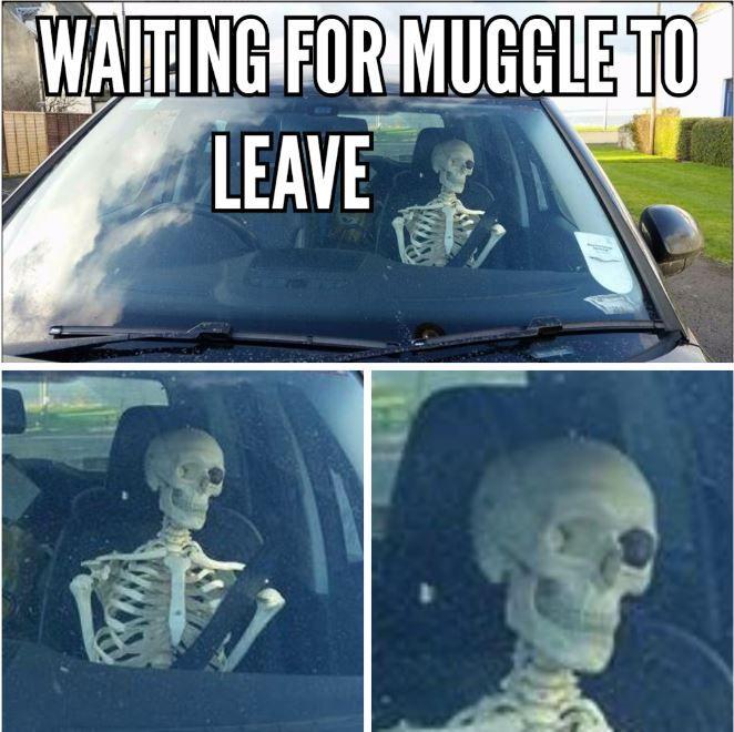 Geocaching Meme wachten op muggles