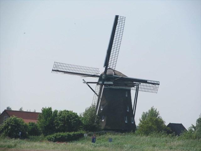 Geocaching Haarlem